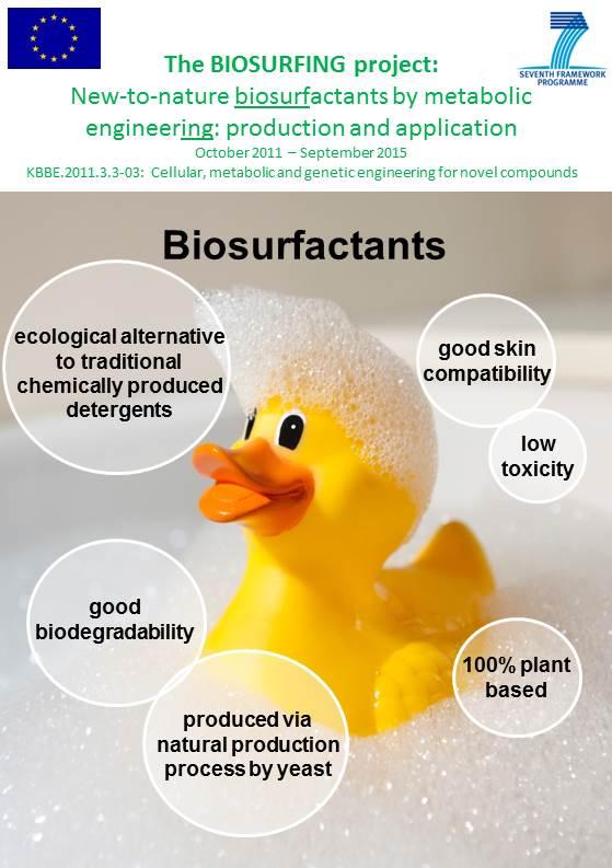 biosurfing_brochure_12e